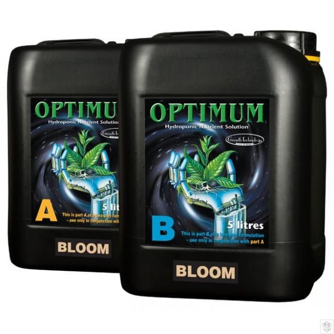 GT Optimum Bloom A&B